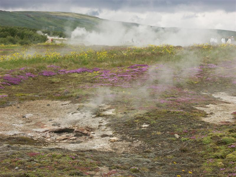 Iceland Geothermal fields around Geysir.jpg