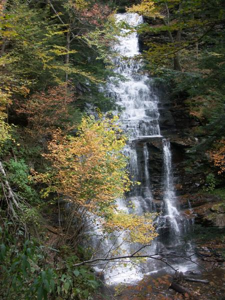 Ricketts Glen 048.jpg